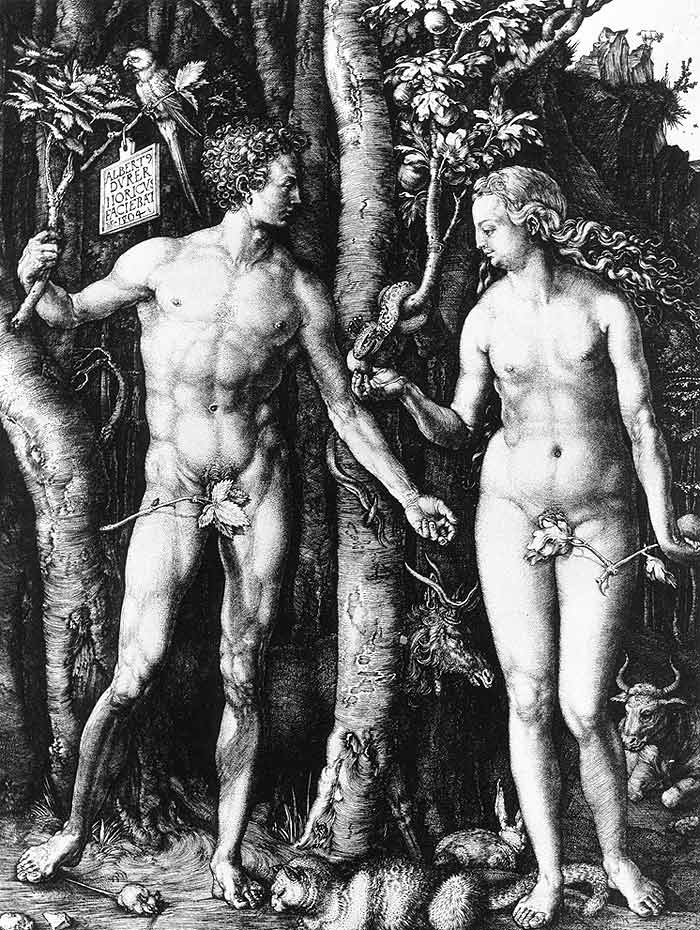 Photo:  Adam and Eve, 1504 (engraving)