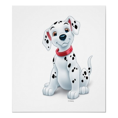 Photo:  101 Dalmations Puppy