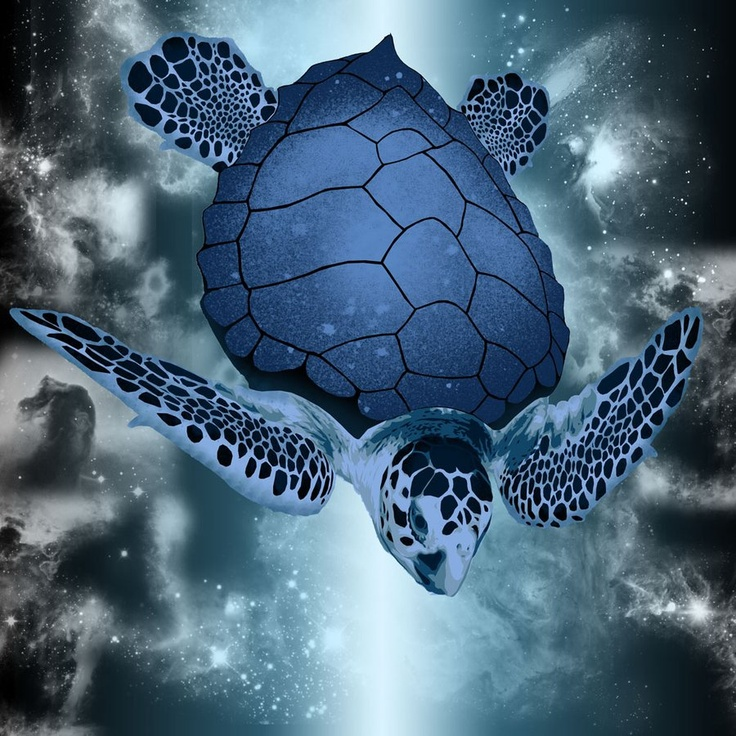Photo:  Blue Sea Turtle