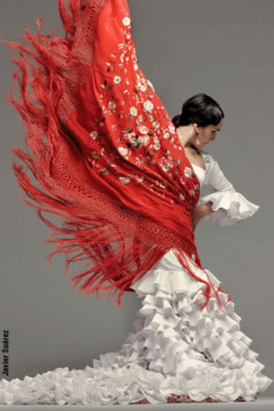Photo:  Flamenco 11