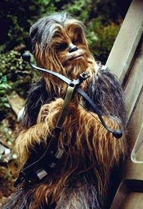 Photo:  Chewbacca 2