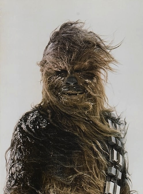Photo:  Chewbacca on Hoth