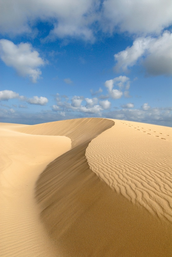 Photo:  Boa Vista sand dunes by the sea