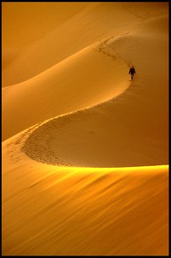 Photo:  Desert trail