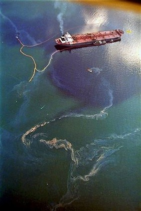 Photo:  The Exxon Valdez oil spill in Prince William Sound, Alaska killed 2,800 sea otters