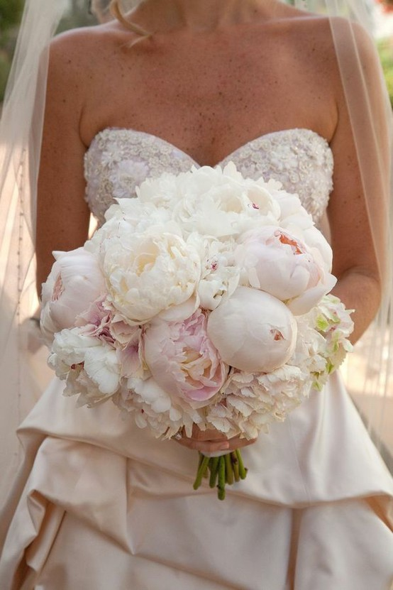 Photo:  Peonies and Hydrangeas