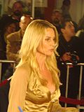 Photo:  Nicollette Sheridan