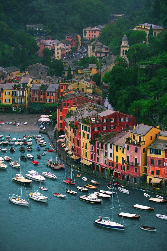 Photo:  Portofino from Castello Brown, Italy