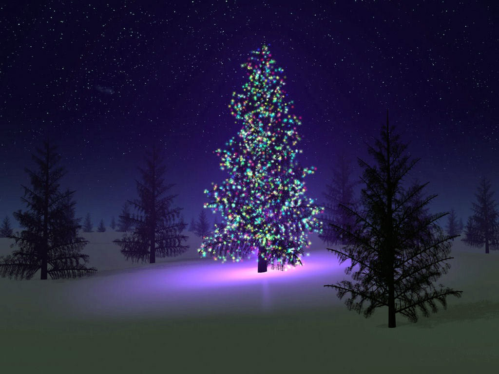 Photo:  1024x768 Wallpaper christmas