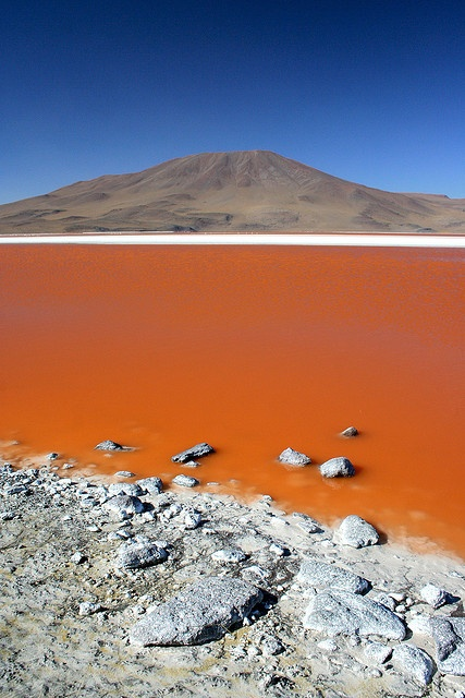 Photo:  Laguna Colorada, Bolivia