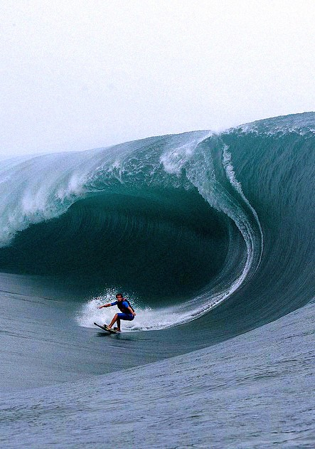 Photo:  HUGE wave