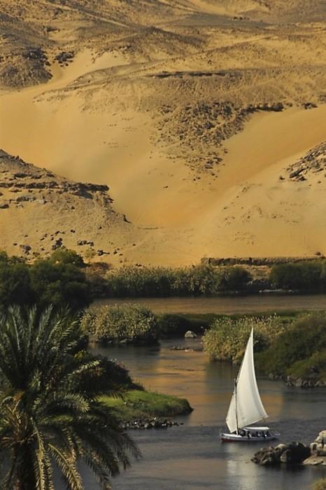 PFTW Egypt
