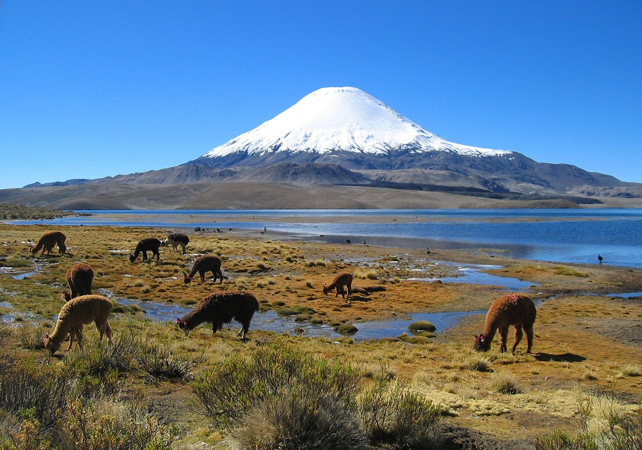 Photo:  Parinacota volcano in northern Chile