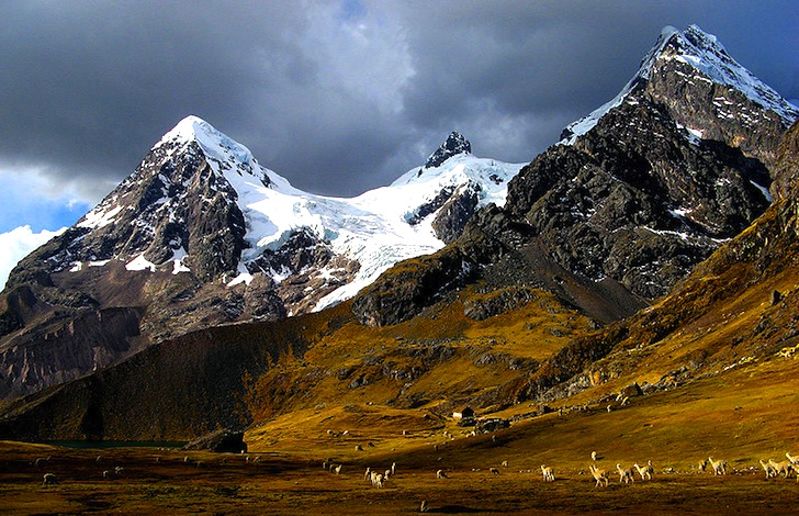 Photo:  ANDES