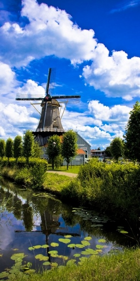 Photo:  Windmill