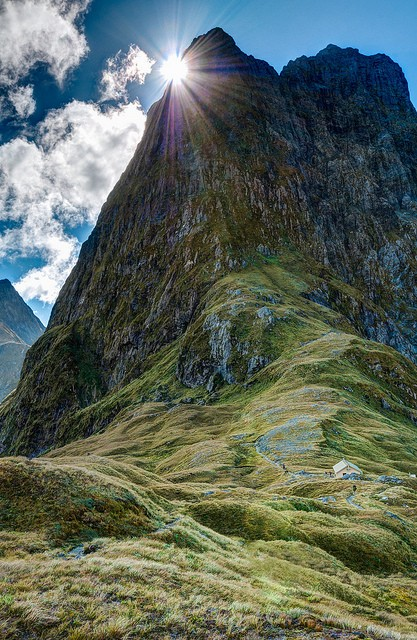 Photo:  Milford track, New Zealand