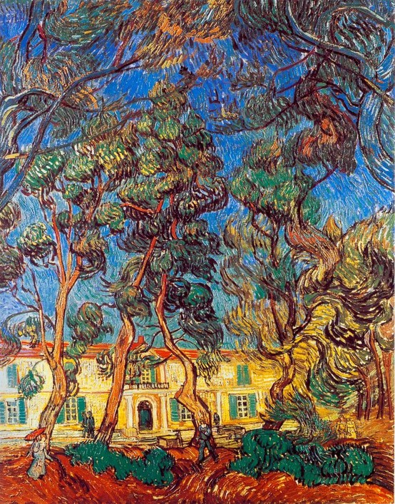 Photo:  Van Gogh, Madhouse Garden